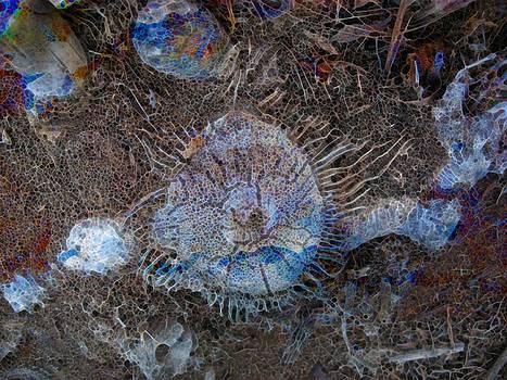 Abstract. Unknown World by Natalya Shvetsky