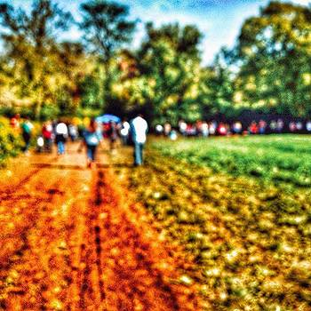 Abstract Walk On The Farm by Phunny Phace