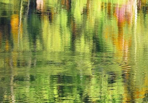 Buddy Scott - abstract water