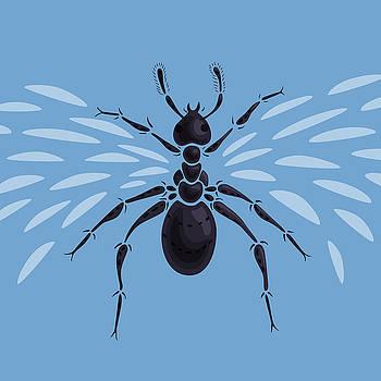 Abstract Winged Ant by Boriana Giormova