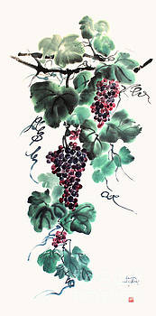 Nadja Van Ghelue - Abundant Grapes
