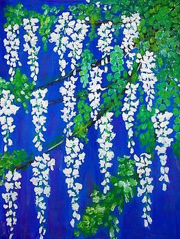 Acacia flowers  by Elena Buftea