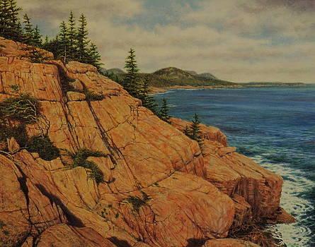 Acadia by Barry DeBaun