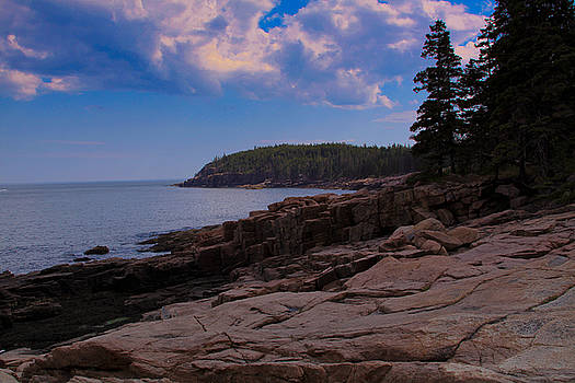 Acadia by Belinda Dodd