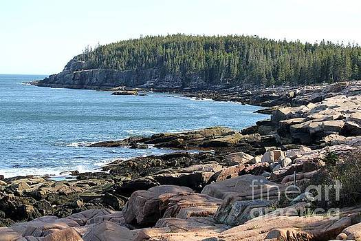 Acadia Cove by Theresa Willingham