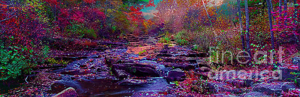 Acadia Maine sunrise stream fall by Tom Jelen