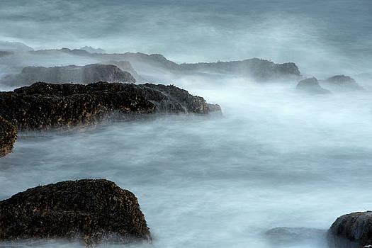 Acadia Mist by Eleanor Bortnick