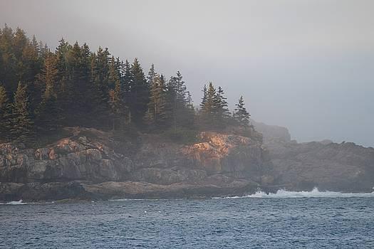 Acadia National Park by Martha Boyle