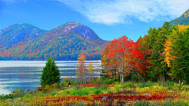 Mike Breau - Acadia National Park