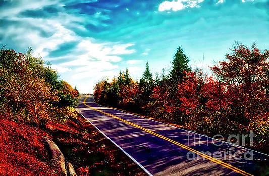 Acadia Natl Park Cadillac Mountian Road Fall Maine  by Tom Jelen