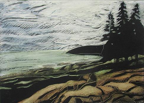Acadia - Ocean Path View by Grace Keown