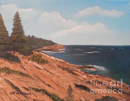 Acadia Shore by William McCutcheon