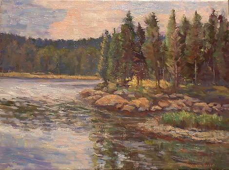 Acadian Inlet by Roseann Berluti