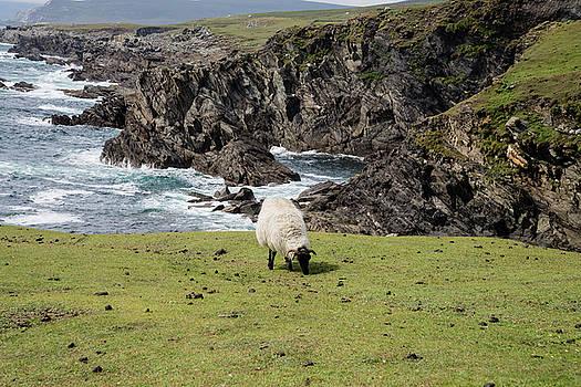 Achill Sound by Martina Fagan