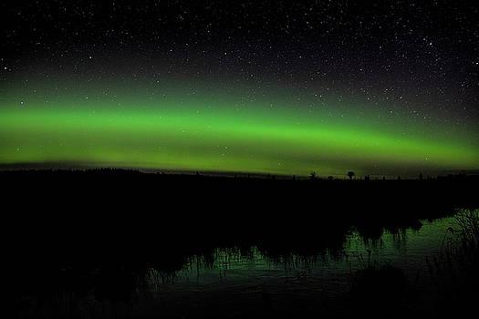 Dale Kauzlaric - Ackley Green Glow
