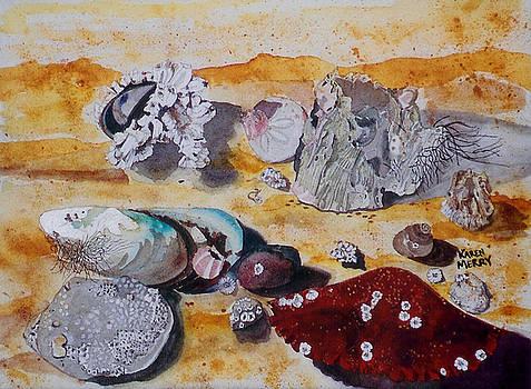Acorn Barnacles by Karen Merry