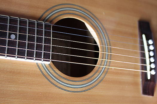 Acoustic Guitar Strings by Sheryl Chapman Photography