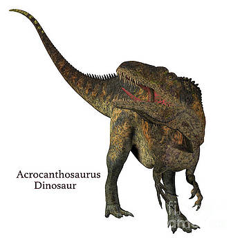 Acrocanthosaurus Dinosaur Tail with Font by Corey Ford