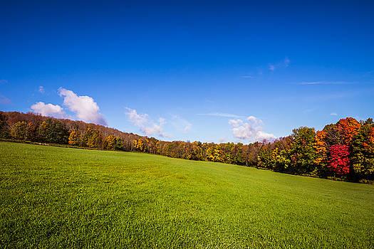 Chris Bordeleau - Across an Autumn Field