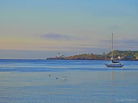 Across the Bay by Teri Ridlon