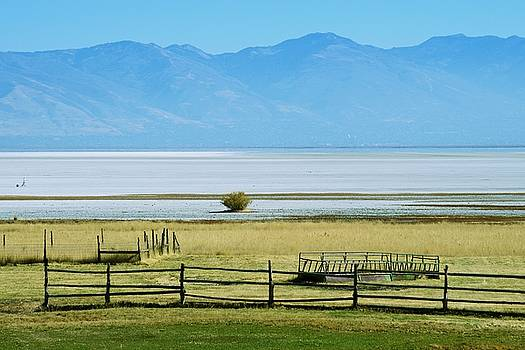 Across The Salt Flats by Eric Tressler