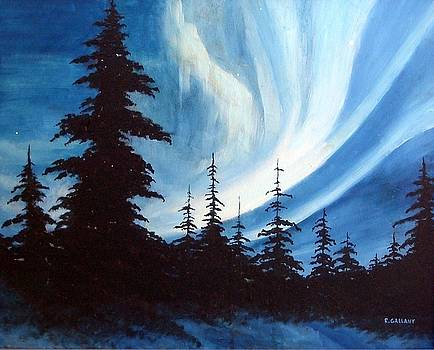Actic Aurora by Rick Gallant