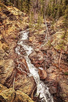 Susan Rissi Tregoning - Adams Falls