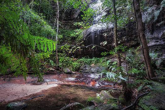Adelina Falls at South Lawson Waterfall Circular Walking Track by Daniela Constantinescu