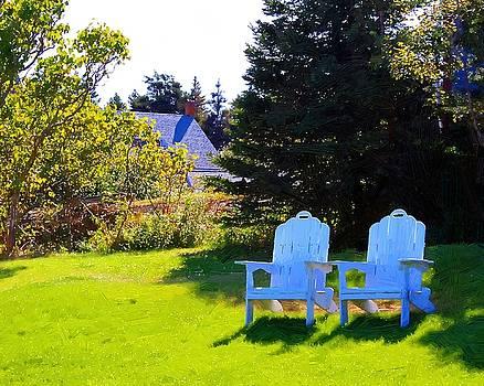 Adirondack Chairs by John Ellis