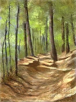 Adirondack Hiking Trails by Judy Filarecki