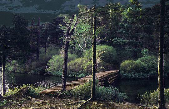 Adirondack Mountain Path by Joe Halinar