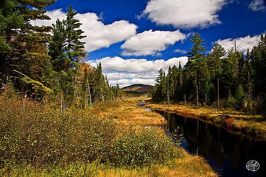 Adirondacks by Brad Hoyt