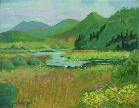 Adirondacs and Saranac River by Robert P Hedden