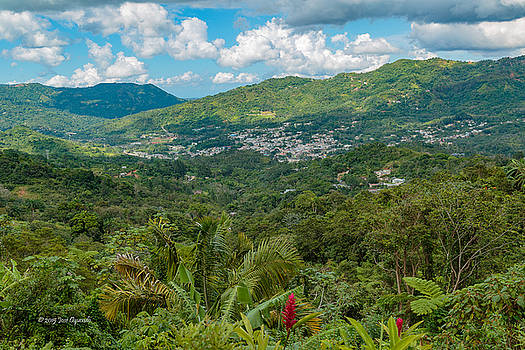 Adjuntas by Jose Oquendo