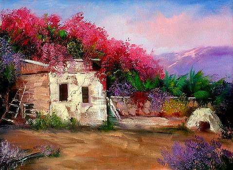 Adobe Spring by Sally Seago