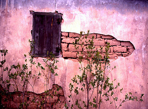 Adobe Wall by Gene Garrison