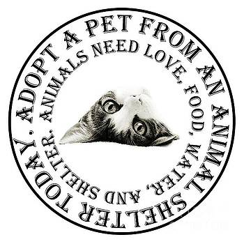 Andee Design - Adopt A Pet T-Shirt Design