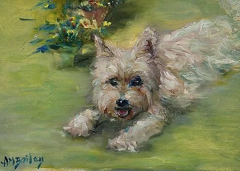 Adorable Beast by Ann Bailey