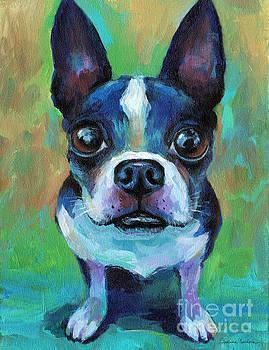 Svetlana Novikova - Adorable Boston Terrier Dog