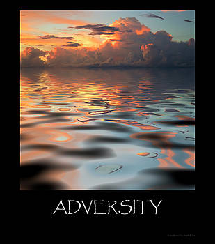 Adversity by Jerry McElroy