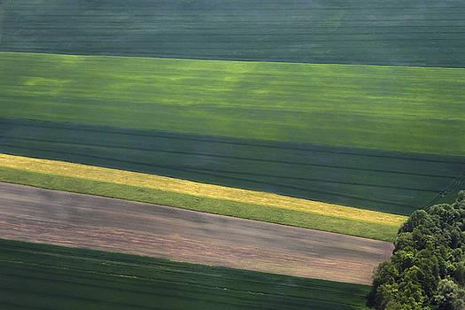 Teresa Zieba - Aerial Abstract