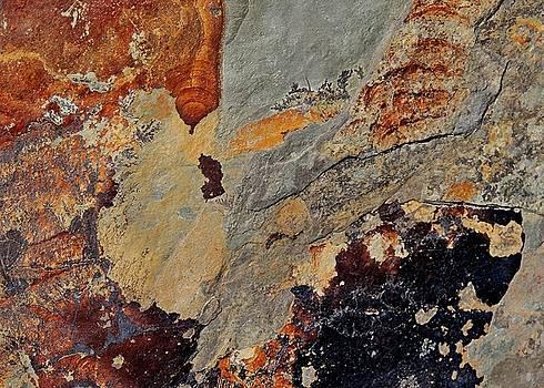 Rock Aerial Landscape 5 by Denise Clark