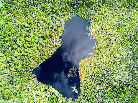 Aerial of Boreal Forest Lake by Scott Leslie