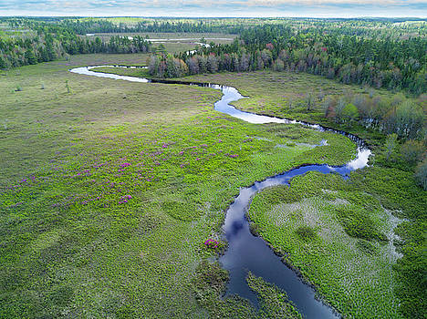 Aerial of Winding River and Meadow with Rhododendrons by Scott Leslie