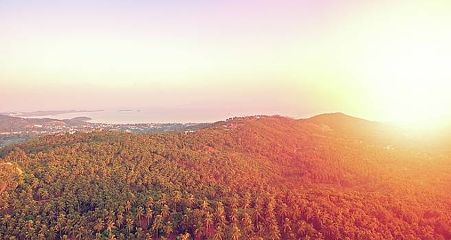 Aerial panoramic view of sunset over mountain jungle by Lukasz Szczepanski