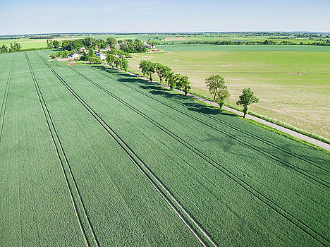Aerial view of country road, village and green field of grain by Lukasz Szczepanski