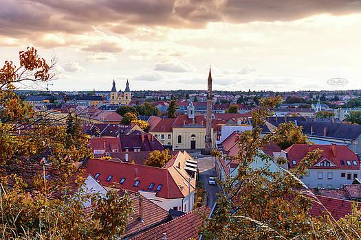 Elenarts - Elena Duvernay photo - Aerial view of Eger city, Hungary