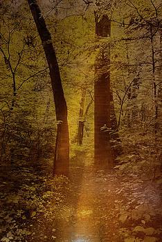 Aeris #15 by Kevin Blackburn