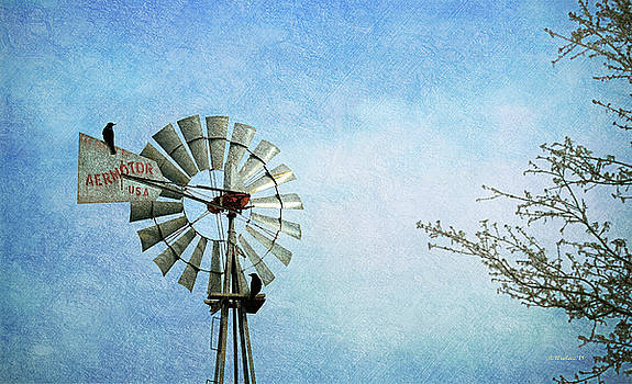 Aermotor Windmill by Brian Wallace