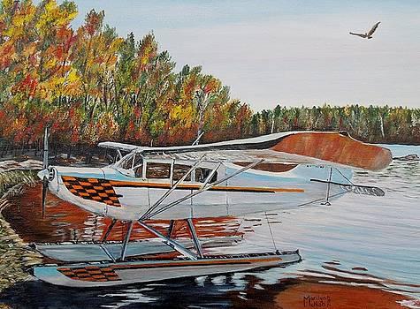 Aeronca Super Chief 0290 by Marilyn  McNish